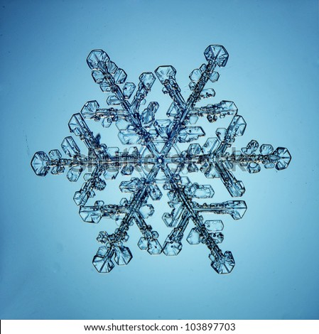 Real snowflakes water crystals