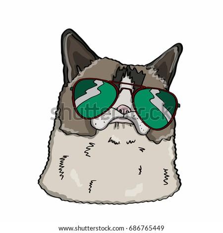 Realistic cat head  and sunglasses Stok fotoğraf ©