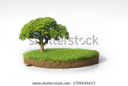 Realistic 3D rendering circle cutaway grass field with tree, 3D Illustration round soil podium cross section with  green garden isolated on white background