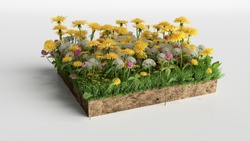 realistic 3D rendering cutaway terrain floor, 3D Illustration soil ground cross section with earth land and green grass flowers
