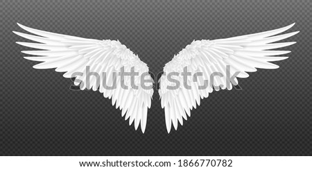 Realistic wings. Pair of white isolated angel style wings with 3D feathers on transparent background.  illustration bird wings design