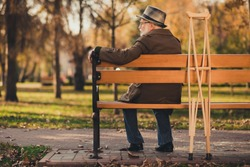 Rear behind view photo of old white hair grandpa street walk lonely sit bench crutches hard motion have nobody sad miss widower wear glasses jacket cap autumn city empty deserted park outside