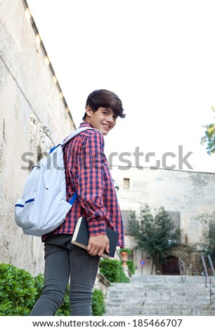 fbbbe174d7f Rear portrait of a teenager student boy walking up the stairs in a college  campus stone