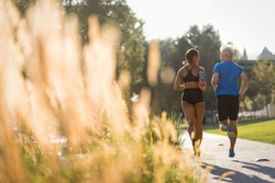 Rear shot of multi ethnic couple jogging in park