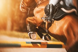 Rear view as a bay racehorse with a rider in the saddle quickly jumps over the high yellow barrier in a show jumping competition, illuminated by sunlight. Horse riding. Equestrian sports.