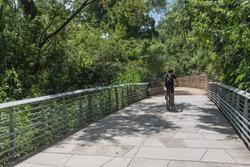 Rear view healthy man biking along nature boardwalk near downtown Austin, Texas, USA