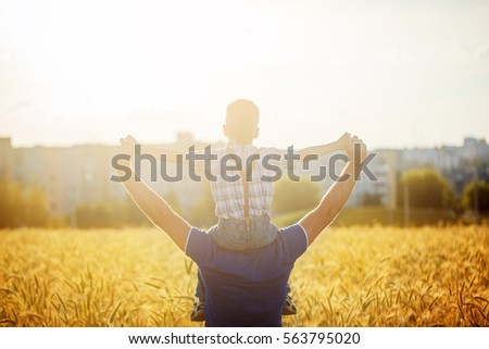 Rear view of a father with his son on the shoulders standing in a field and city on summer sunset