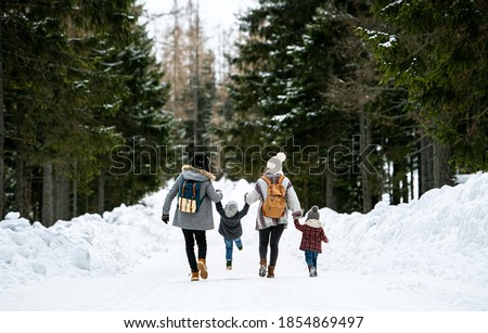 Rear view of family with two small children in winter nature, walking in the snow.