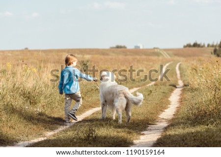 rear view of little kid in field playing with golden retriever on road in field