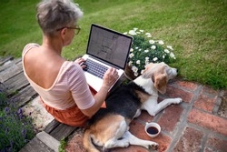 Rear view of senior woman architect with laptop working outdoors in garden, home office concept.