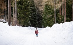Rear view of small girl walking on road in winter nature.