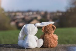 Rear view teddy and bunny sitting together looking out to blurry village in sunny day spring, Faithful friends ,White rabbit and brown bear sitting at grass fields in summe.Love,family and bestfriends
