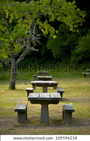 Recreation Site Wood Picnic Benches - Vertical Photo. Recreation Photo Collection.