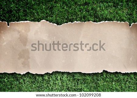 recycled paper ripped on grass.