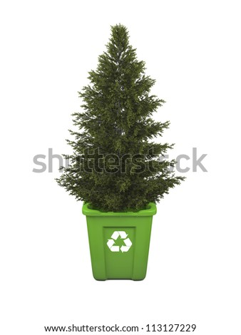 Recycling concept with coniferous tree growing in green recycle bin, isolated on white background