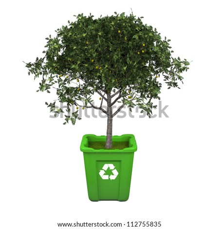 Recycling concept with fruit tree growing in green recycle bin