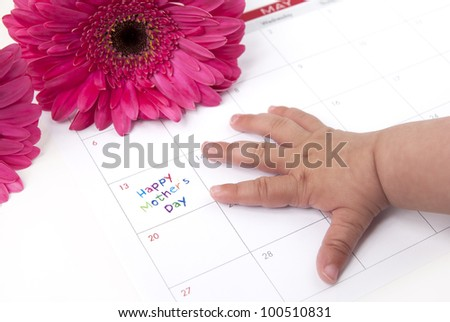 Red african daisies with calendar showing mothers day