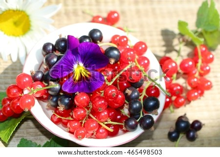Red and black currants Stock fotó ©