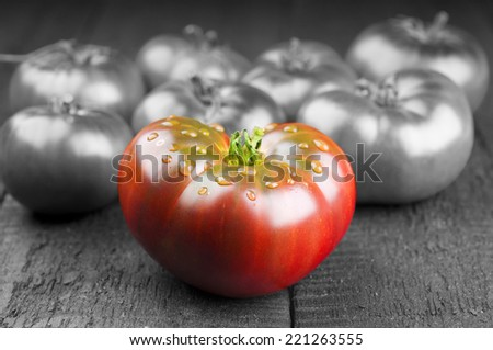 Red and black tomatoes. Creative concept.