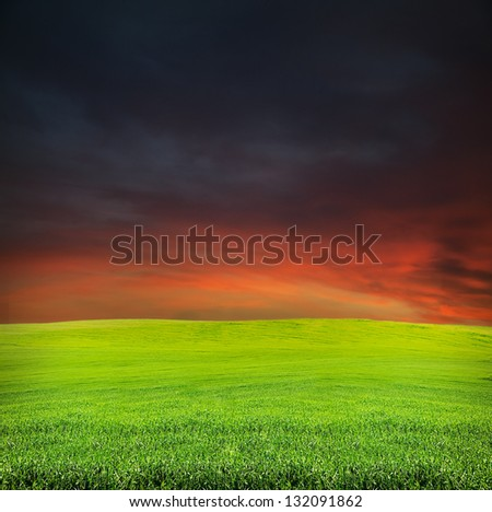 red and dark blue sky during sunset in summer evening green field landscape