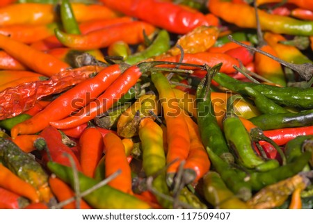 Red and green hot peppers background from north area in India