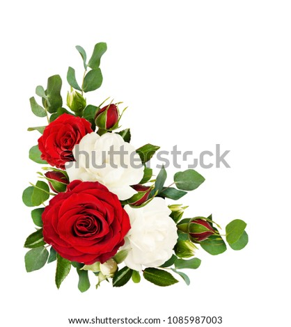 free photos rose border flowers in corners avopix com