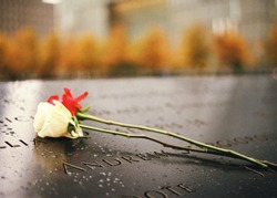 Red and white rose on the 9/11 Memorial north pool , blurry background