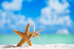 red and white starfish with ocean, on white sand beach, sky and seascape, shallow dof