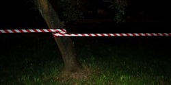 Red and white tape attached to a tree - night view