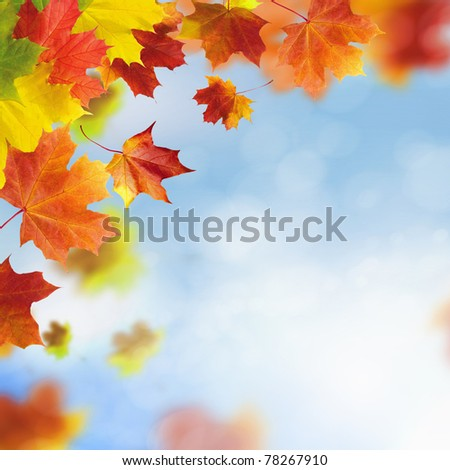 Red and yellow leaves against a bright blue sky. Bokeh effect.