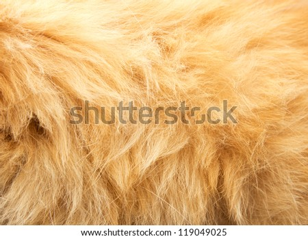 red animal's hair as background