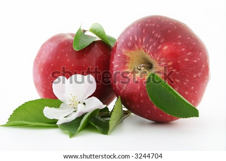 Red apple and white flower on a white background.