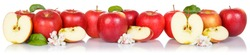 Red apple fruits apples fruit isolated on a white background in a row