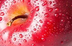 red apple, macro