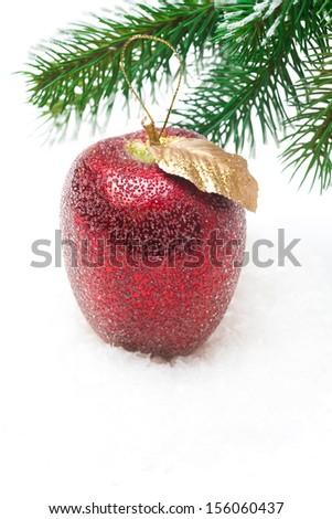 red apple on snow under fir branch on white background