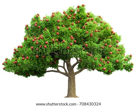 red apple tree isolated 3D illustration Stock foto ©