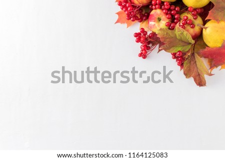 Red apples, berries and autumn leaves on a white background #1164125083