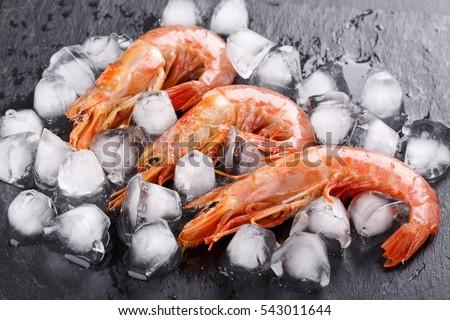 Shutterstock Red argentine shrimps (head on) on black