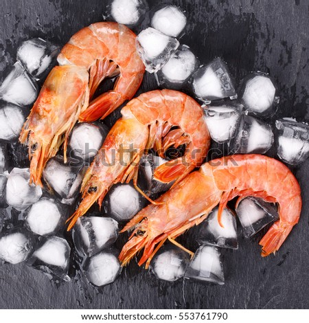 Shutterstock Red argentine shrimps (head on) on black Top view