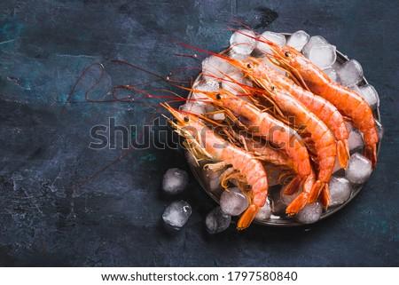 Red Argentine shrimps ocean jumbo shrimps copy space. Photo stock ©