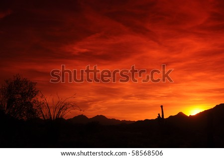 Red Arizona sunset with saguaro and ocotillo cactus in foreground