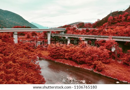 Stock Photo Red autumn forest and mountains, flyover and nature, red fall nature at Honshu island, Yamanashi, Japan. Pop art colored landscape