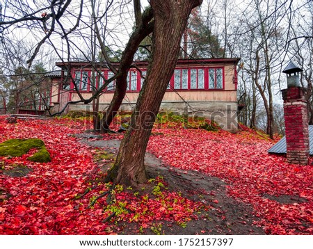 Red autumn forest house view. Forest house in red autumn. Red autumn forest mansion