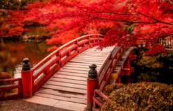 Red autumn park bridge. Wooden bridge in autumn park. Red autumn scene