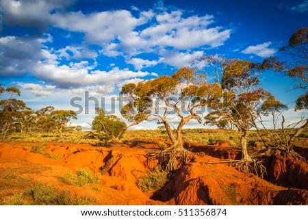 Red Banks Scenic Australian Outback rural Landscape #511356874