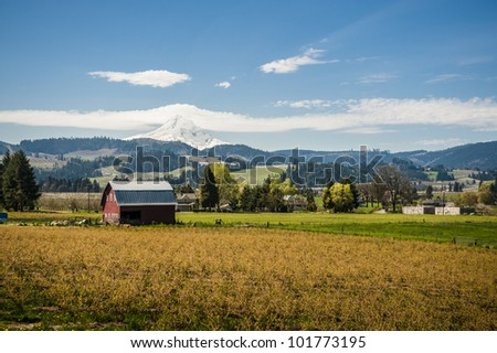Red barn among apple orchards below a snowy mountain, Hood River Valley, OR - stock photo