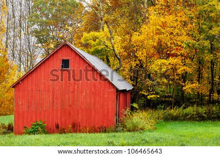 Red barn in autumn, with a background of colorful trees and fall leaves