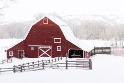 Red barn in snow on lamb farm.