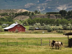Red barn on the farm in Grand Junction, Colorado.