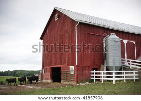 Red Barn with Cows. Horizontal format.